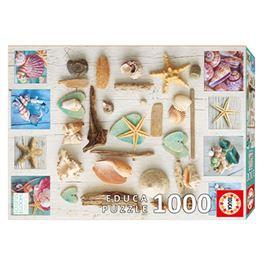 1000 collage de caracolas - 04017658