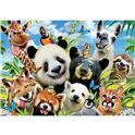 1000 llama drama selfie - 04018117