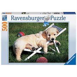 500 pz golden retriever - 26914179